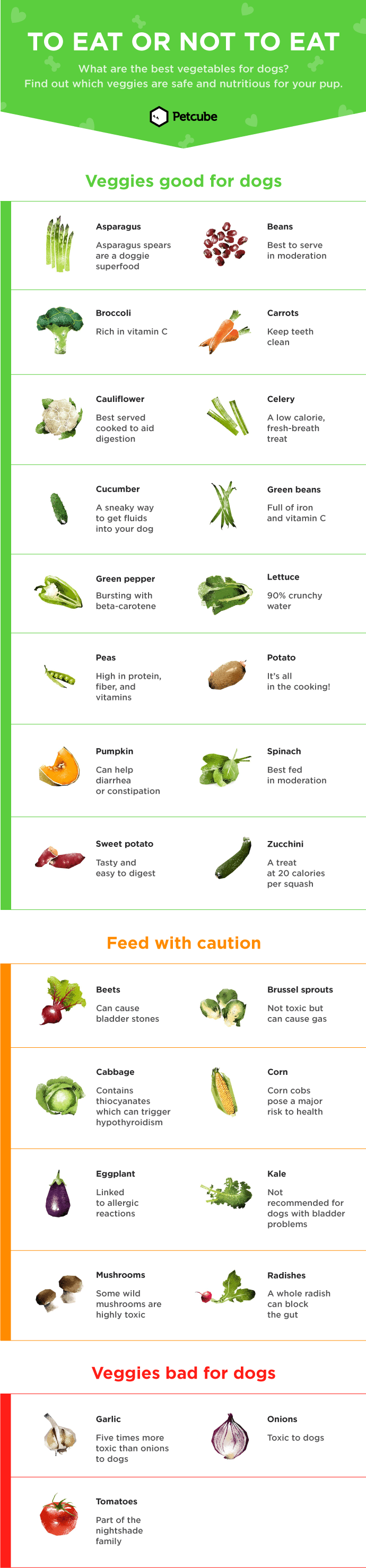 Vegetables dogs can and can't eat infographic