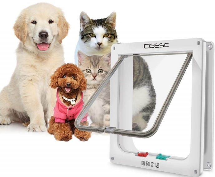 two dogs and two cats and a smart pet door