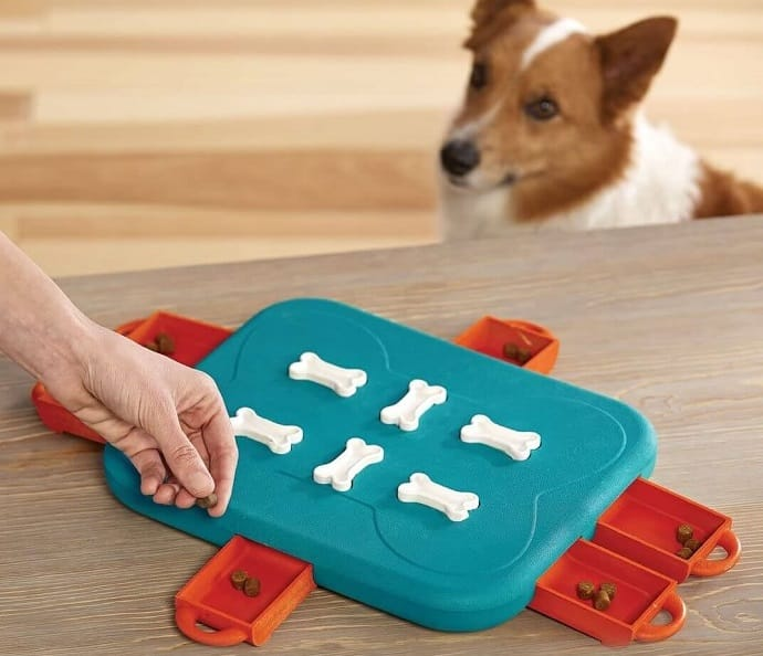 a dog puzzle