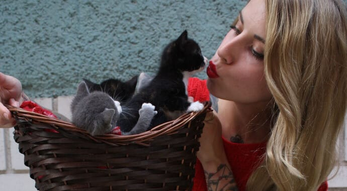 Cat and Girl kissing