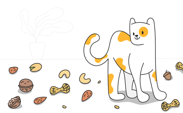 cats and nuts