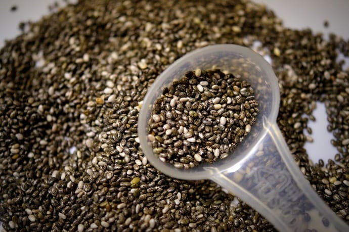 can cats eat chia seeds