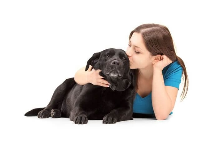 what to do if you have pet allergies