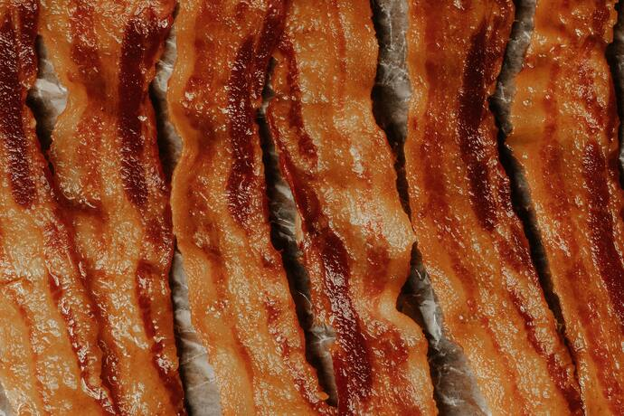 can dogs have bacon