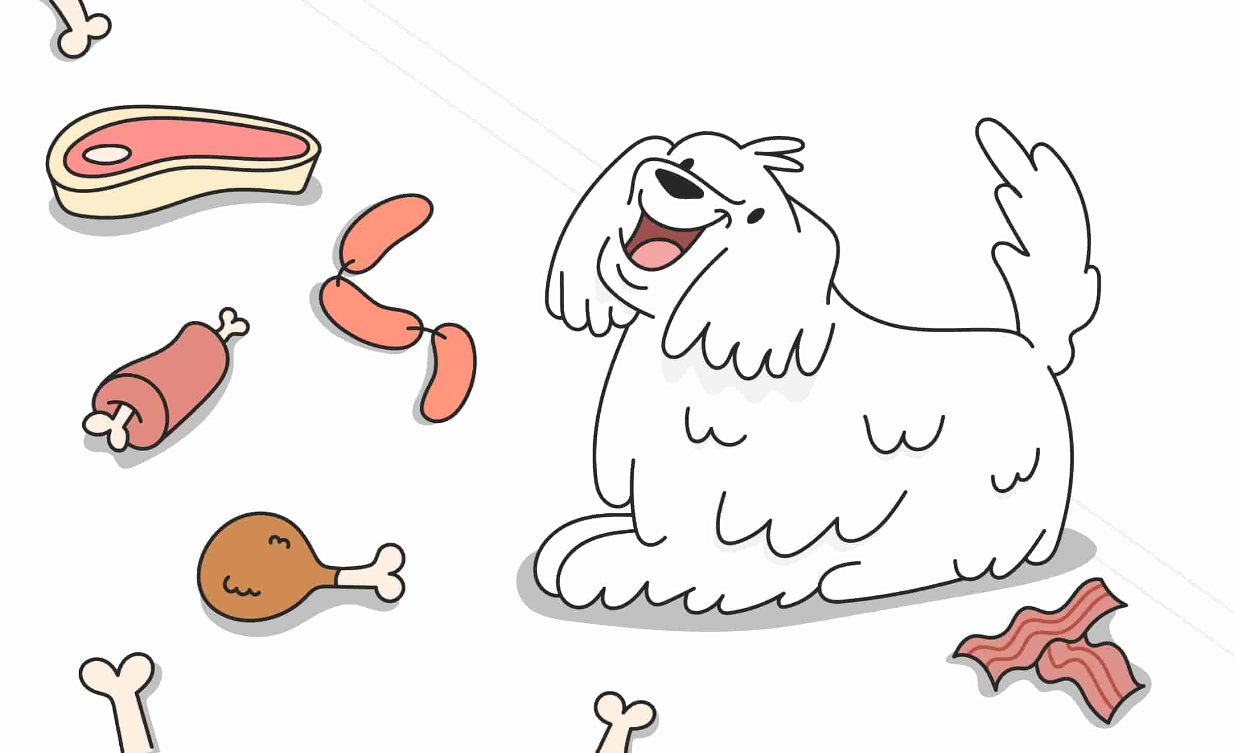 Pork, Chicken, Beef, or Lamb: Is Any Meat Good For Dogs?