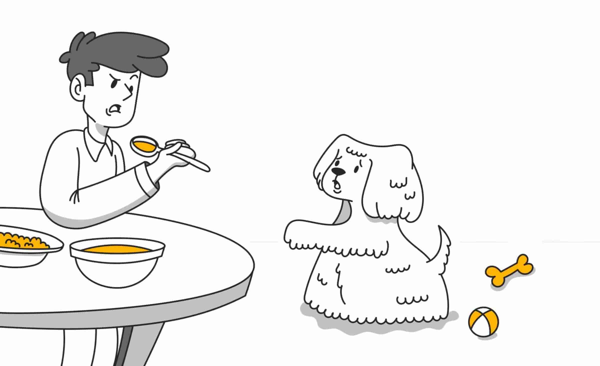 Why Do Dogs Beg for Food and How Can You Stop It?