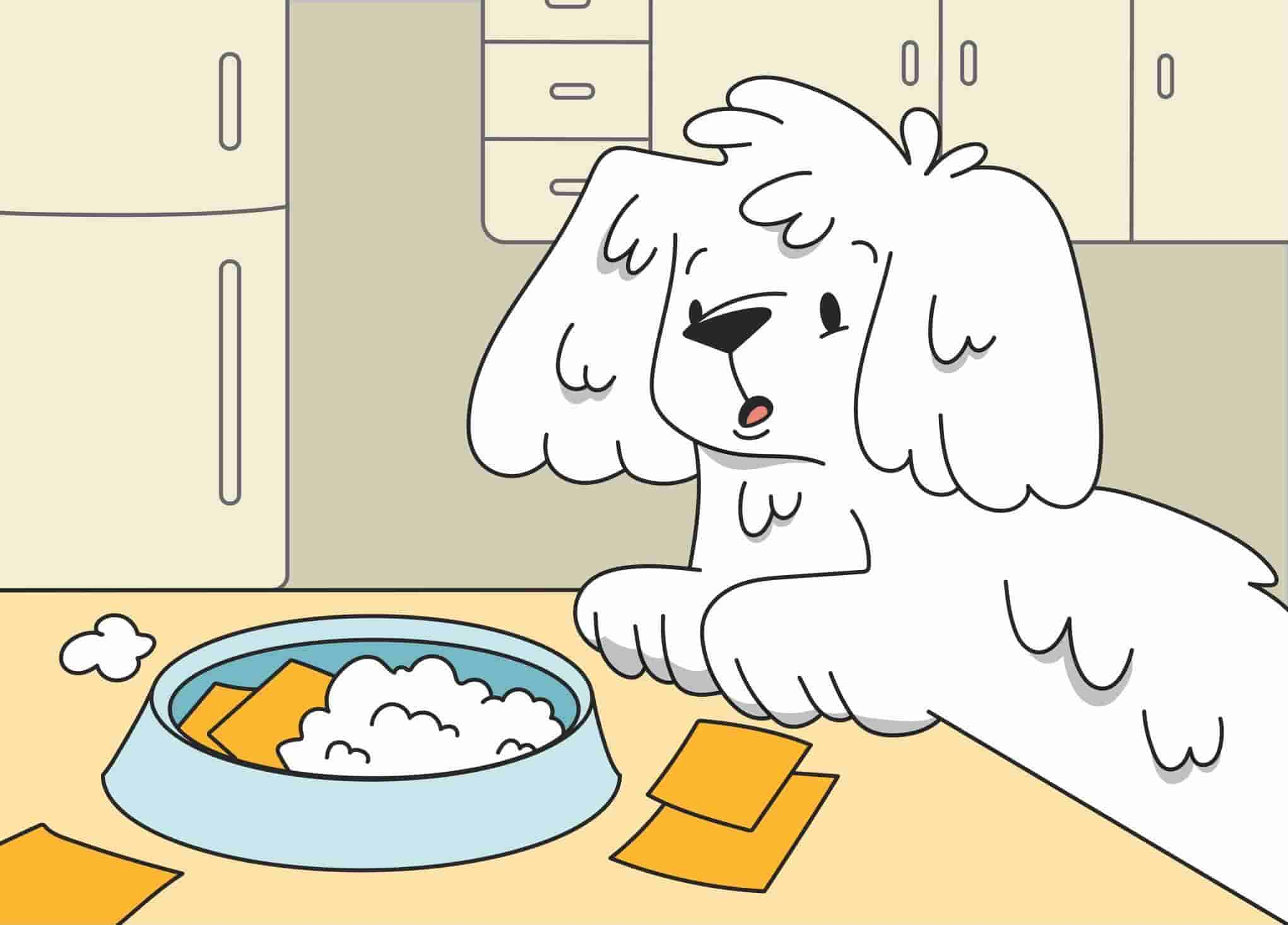 Dogs and Dairy: Can Dogs Eat Dairy Products?
